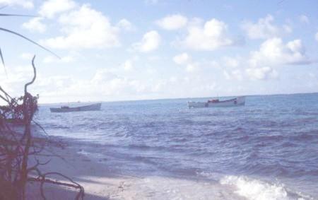 صورة أخرى للجزيرة